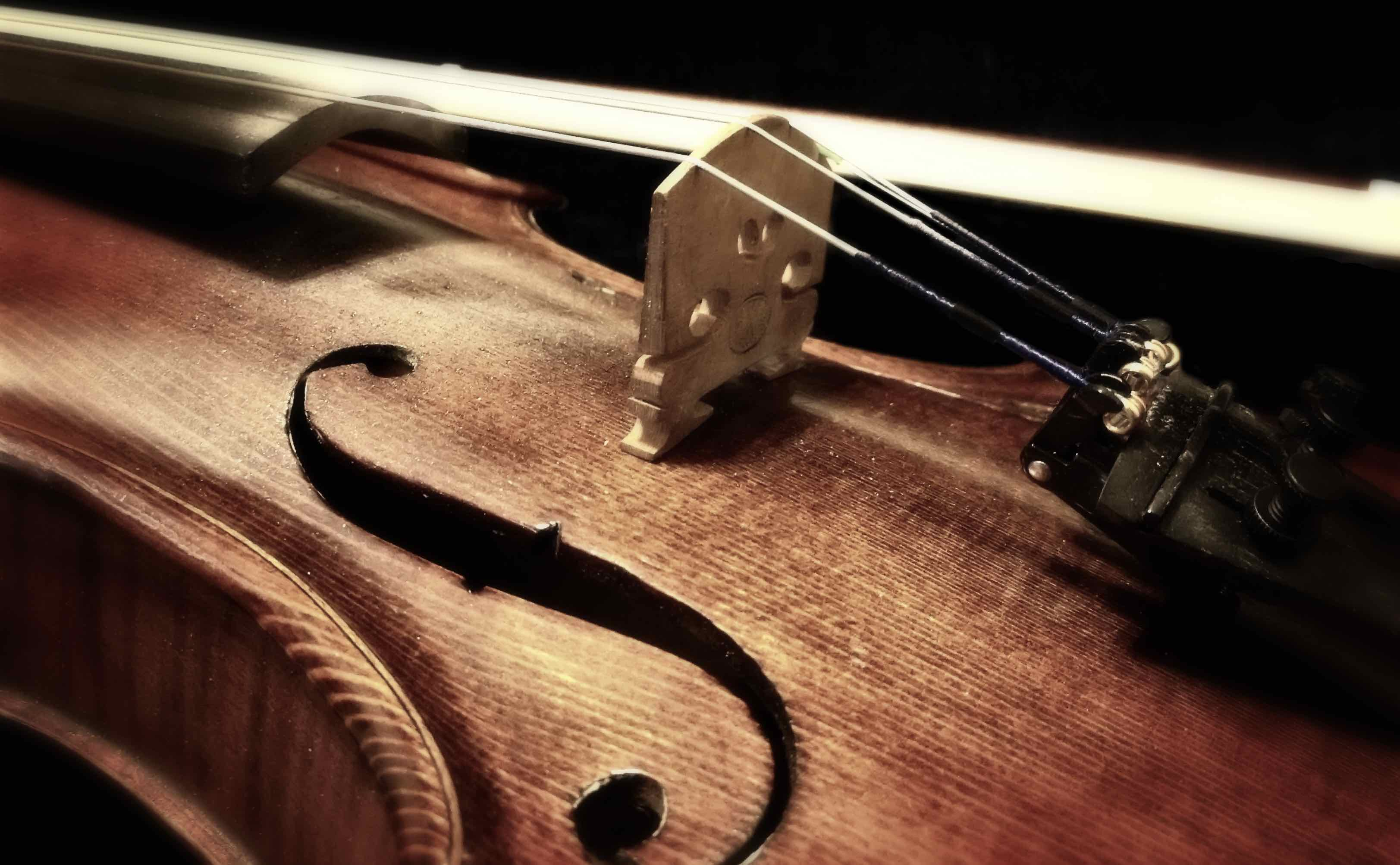 Dettagli violino